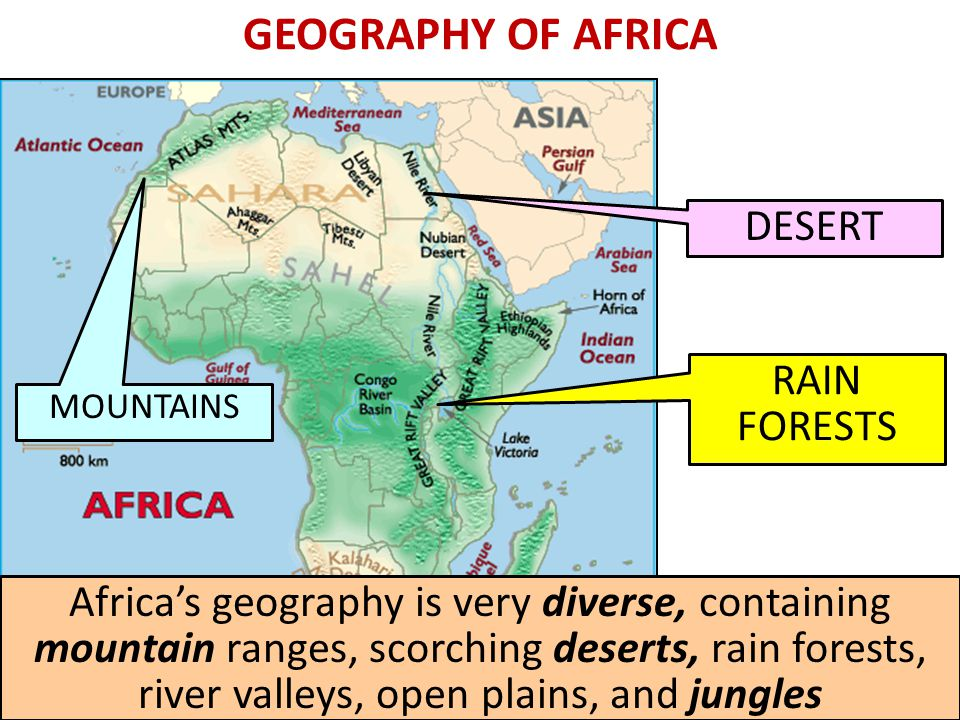 WEST AFRICA AND ISLAM The gold-salt trade spread to the Northeast and attracted Muslim merchants Cultural diffusion between West Africans and the Muslims resulted