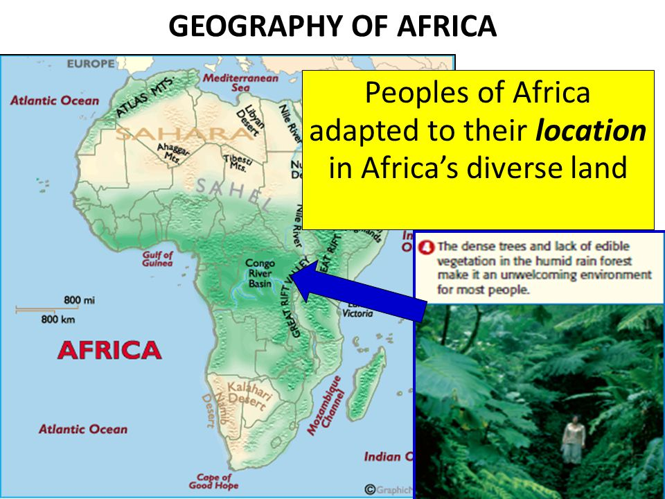 EAST AFRICA The societies of East Africa, unlike those of the sub-Sahara, were shaped by cultural diffusion (exchanging of ideas with other cultures) The East Africans participated in the trade network of the Indian Ocean