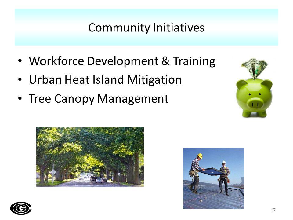 Workforce Development & Training Urban Heat Island Mitigation Tree Canopy Management Community Initiatives 17