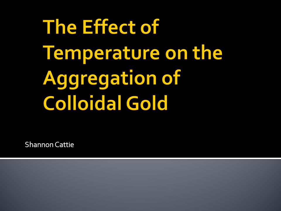 How does temperature affect the rate of aggregation of colloidal gold?