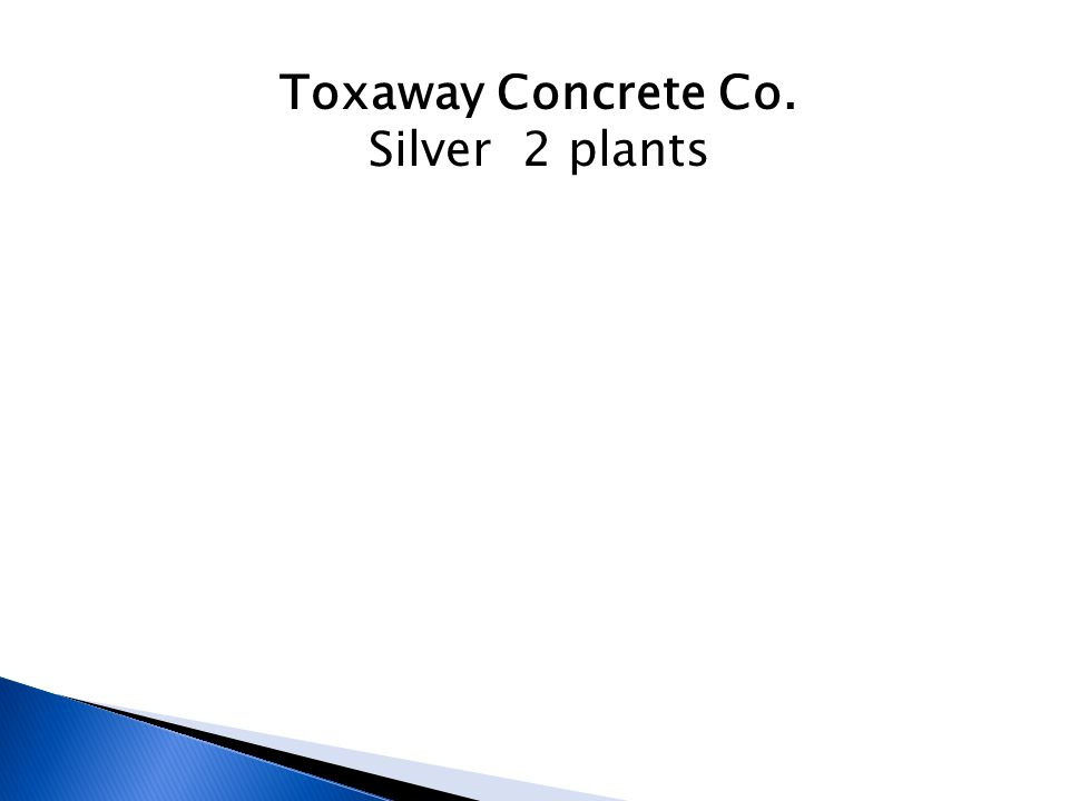 Toxaway Concrete Co. Silver 2 plants