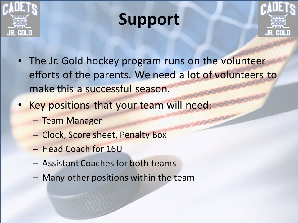 Questions If you have any questions please contact Monica Strout STA Jr Gold Program Coordinator STAJrHockey@hotmail.com 612-369-0680