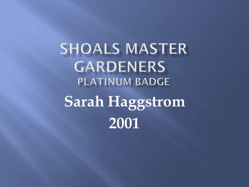 Sarah Haggstrom 2001