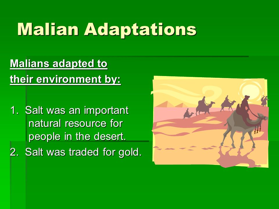 Malian Adaptations Malians adapted to their environment by: 1. Salt was an important natural resource for people in the desert. 2. Salt was traded for