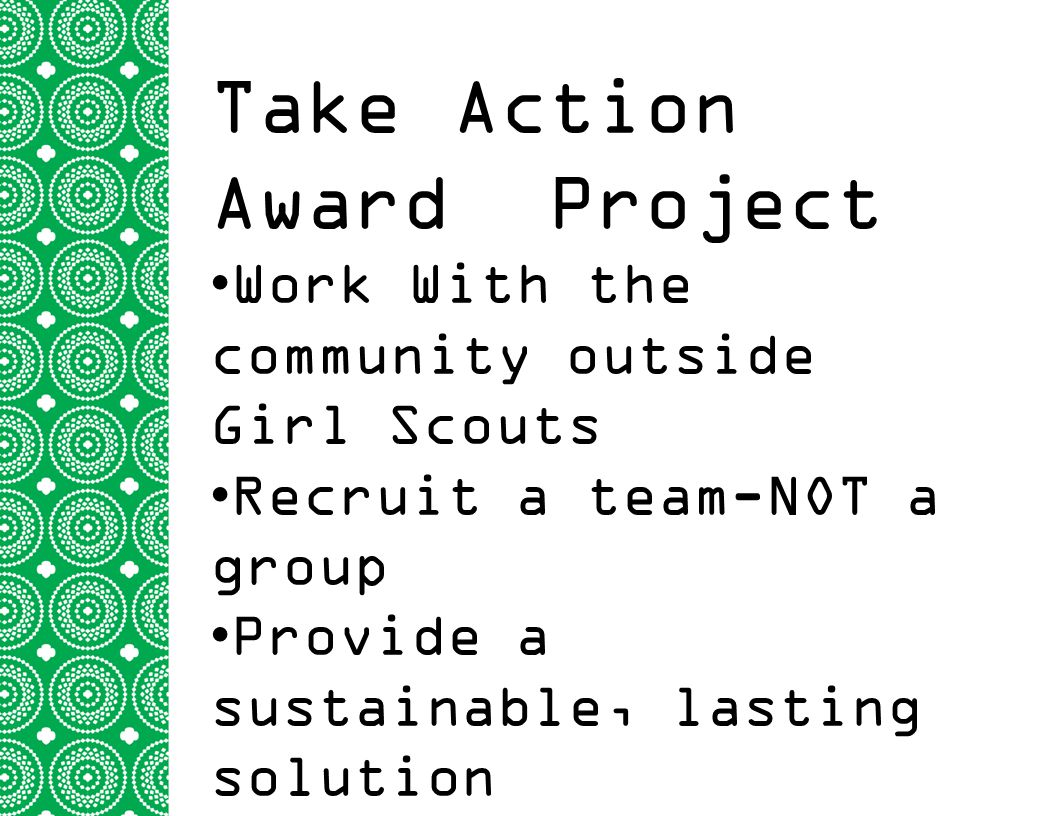 Take Action Award Project Work With the community outside Girl Scouts Recruit a team-NOT a group Provide a sustainable, lasting solution Global Connec
