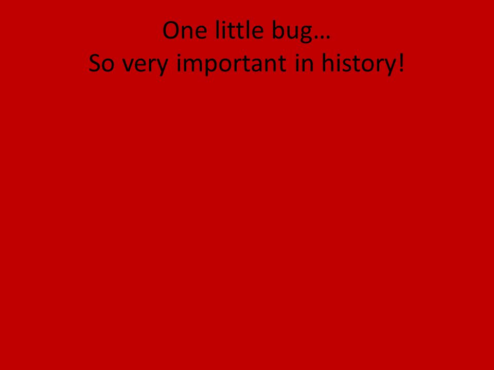 One little bug… So very important in history!