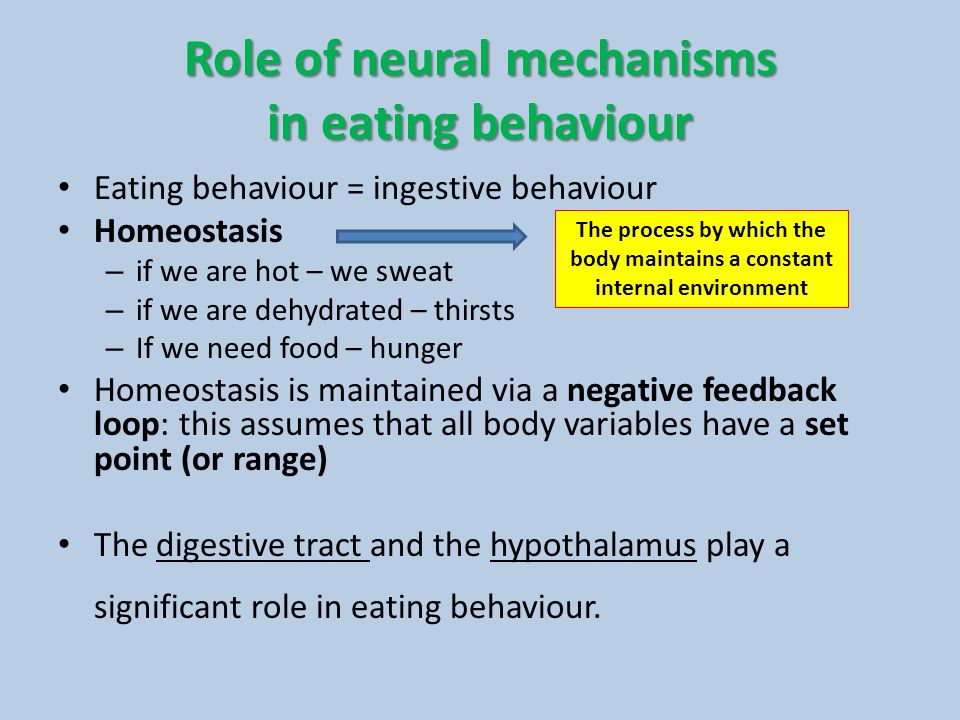 Role of neural mechanisms in eating behaviour Eating behaviour = ingestive behaviour Homeostasis – if we are hot – we sweat – if we are dehydrated – t