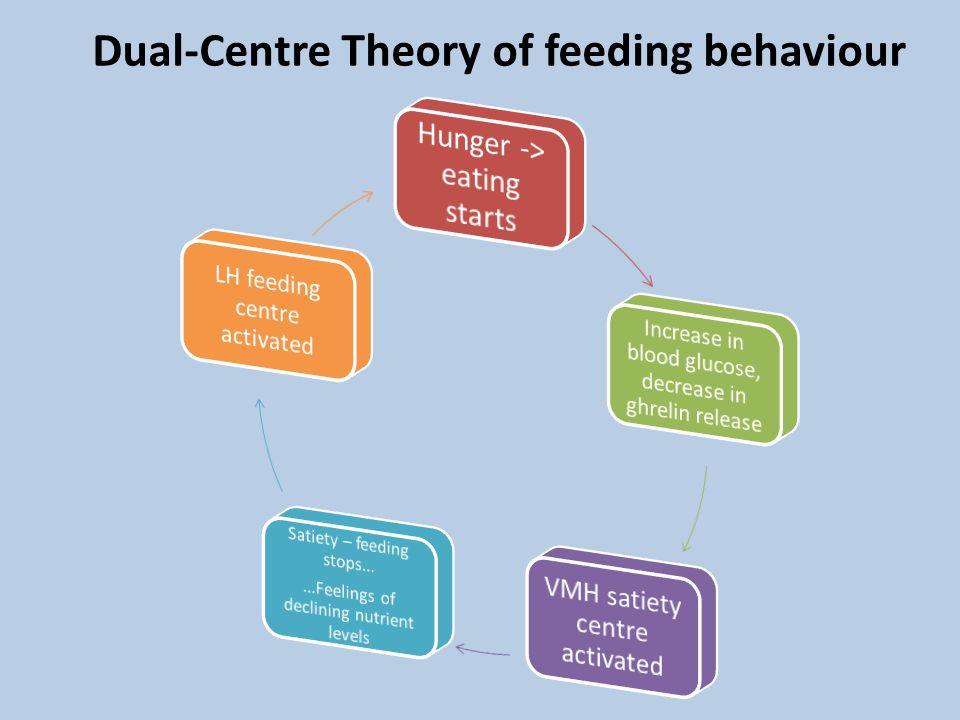 Dual-Centre Theory of feeding behaviour
