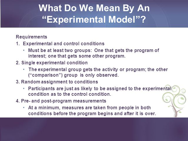 What Do We Mean By An Experimental Model.