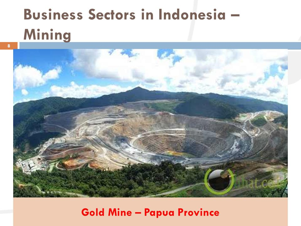 Business Sectors in Indonesia – Mining 8 Gold Mine – Papua Province