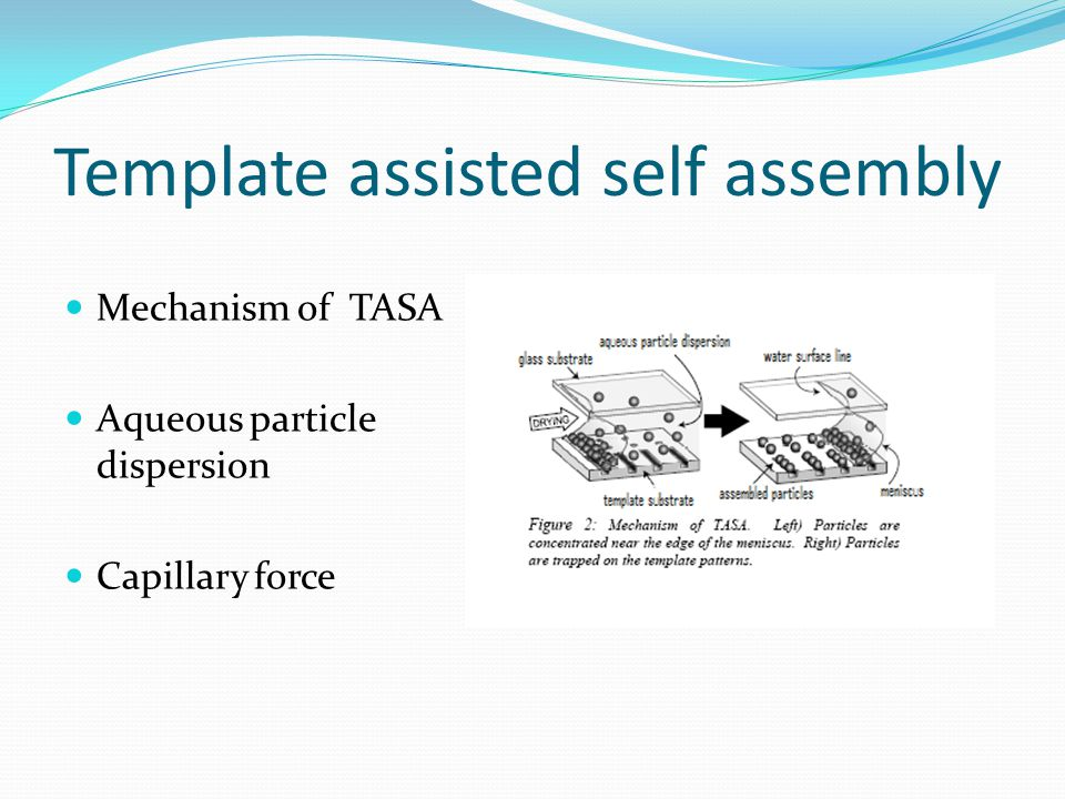 Template assisted self assembly Mechanism of TASA Aqueous particle dispersion Capillary force