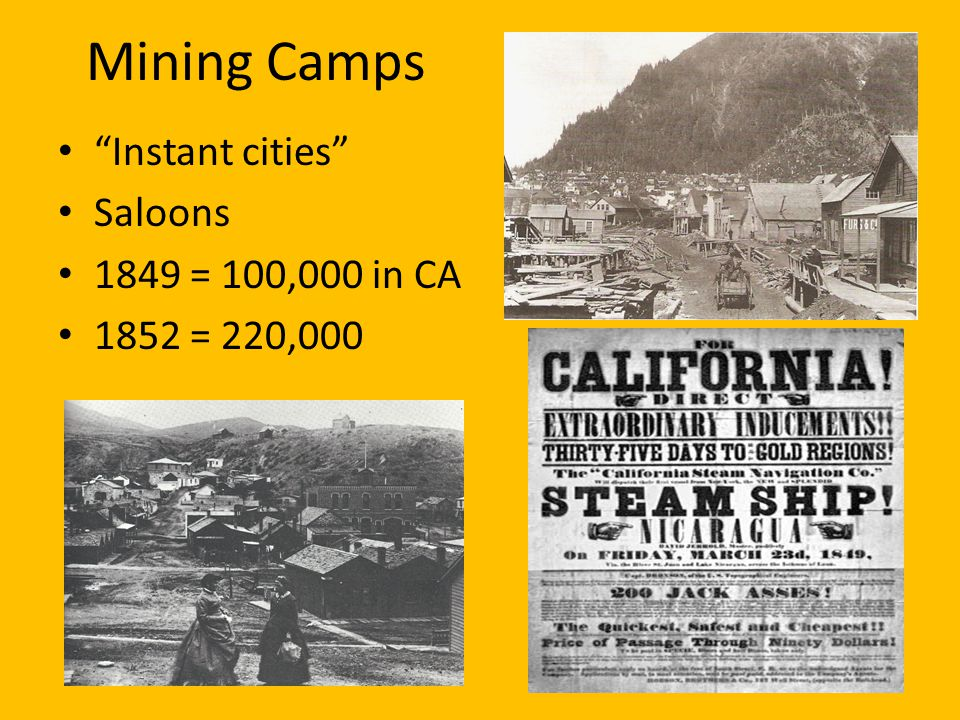 Mining Camps Instant cities Saloons 1849 = 100,000 in CA 1852 = 220,000