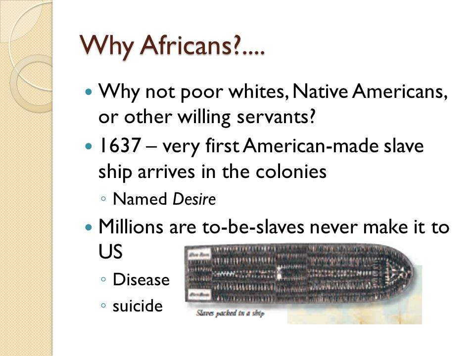 Why Africans?....Why not poor whites, Native Americans, or other willing servants.