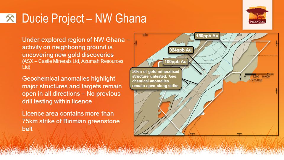 Ducie Project – NW Ghana Under-explored region of NW Ghana – activity on neighboring ground is uncovering new gold discoveries (ASX – Castle Minerals Ltd, Azumah Resources Ltd) Geochemical anomalies highlight major structures and targets remain open in all directions – No previous drill testing within licence Licence area contains more than 75km strike of Birimian greenstone belt Niger Ghana Cote dIvoire Ducie Project 150ppb Au 924ppb Au 100ppb Au 50km of gold mineralised structure untested.