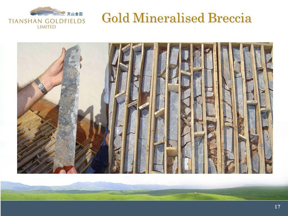 17 Gold Mineralised Breccia