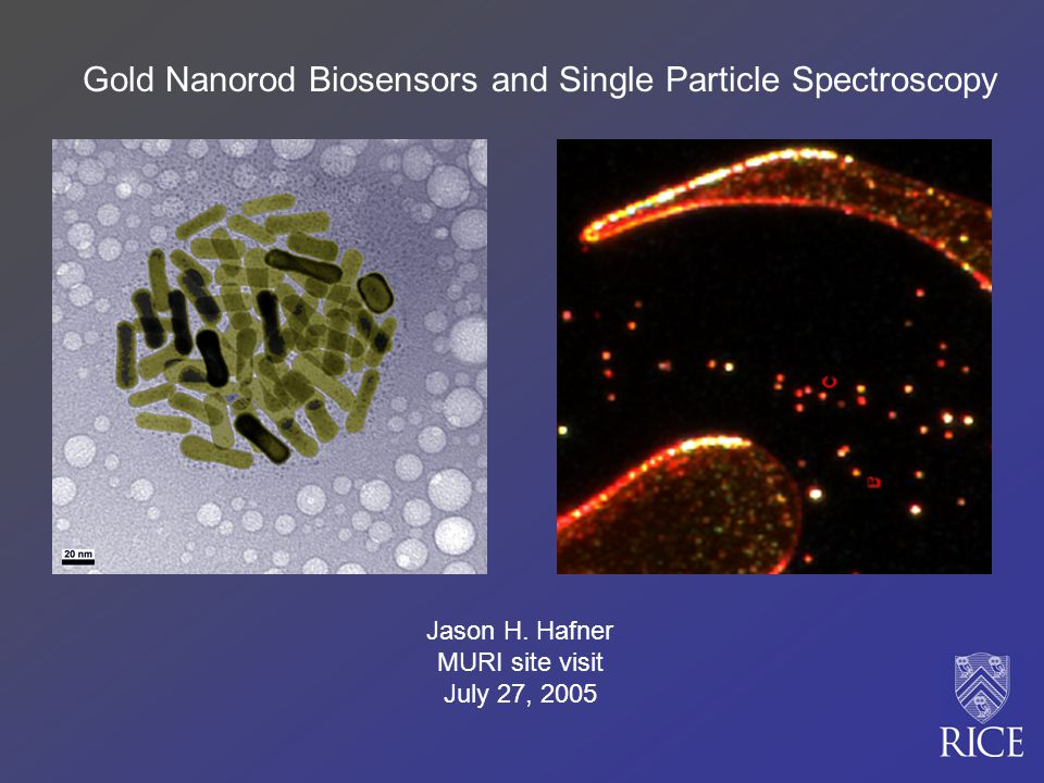 Gold Nanorod Biosensors and Single Particle Spectroscopy Jason H.