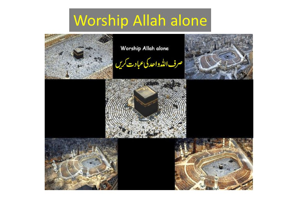 Worship Allah alone