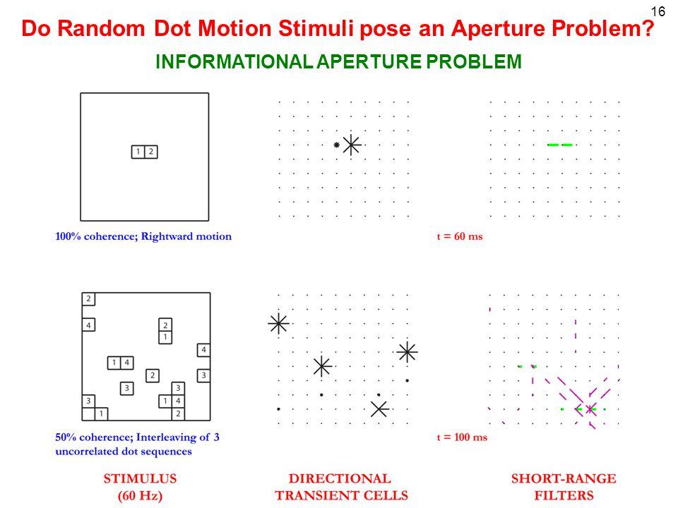 16 Do Random Dot Motion Stimuli pose an Aperture Problem INFORMATIONAL APERTURE PROBLEM