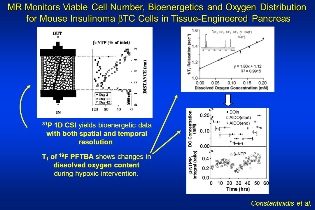 et al. Constantinidis et al. MR Monitors Viable Cell Number, Bioenergetics and Oxygen Distribution for Mouse Insulinoma TC Cells in Tissue-Engineered