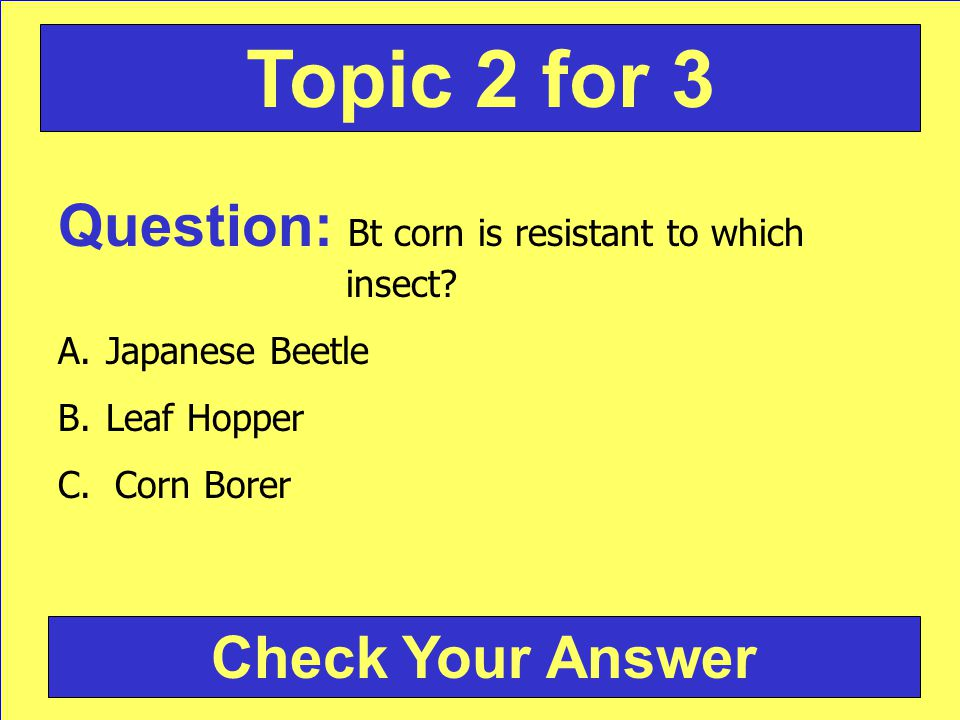 Question: Bt corn is resistant to which insect. A.Japanese Beetle B.Leaf Hopper C.