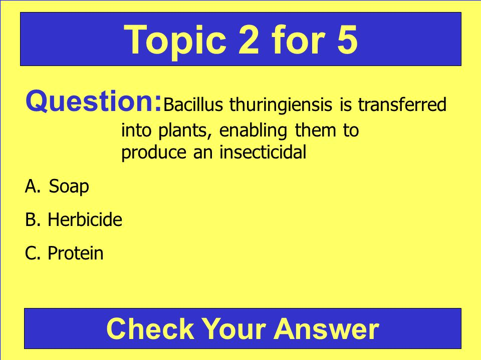 Question: Bacillus thuringiensis is transferred into plants, enabling them to produce an insecticidal A.Soap B.