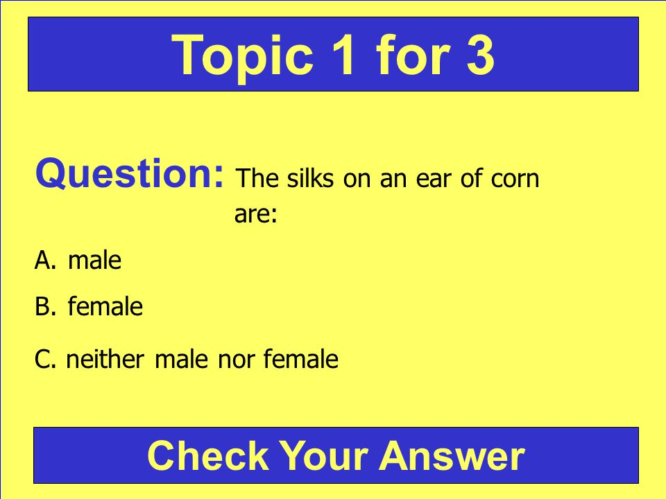 Question: The silks on an ear of corn are: A.male B.female C. neither male nor female Check Your Answer Topic 1 for 3