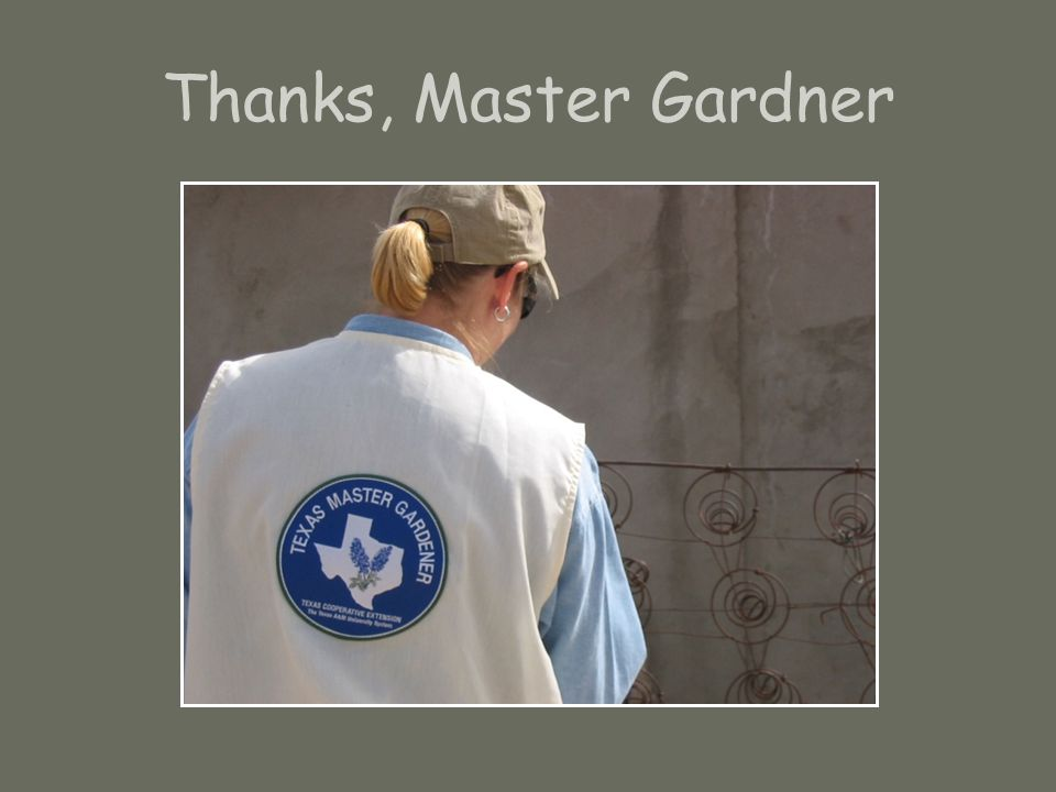 Thanks, Master Gardner