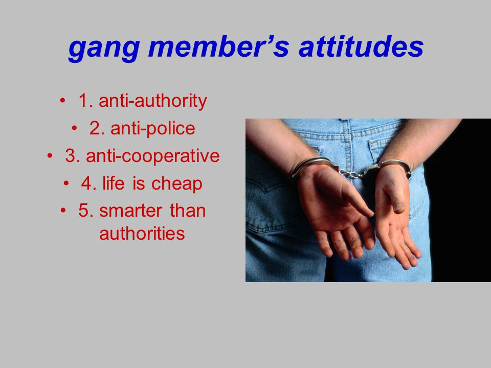 statistics: Allentown Police Department Based on SRO reports: 20 arrests per month 200 referrals per month Vast majority gang-related