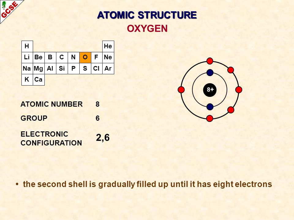 H Li Na K Be Mg B Al C Si N P O S F Cl Ne Ar He Ca 8+ 2,6 ATOMIC NUMBER8 GROUP6 ELECTRONIC CONFIGURATION OXYGEN ATOMIC STRUCTURE the second shell is g