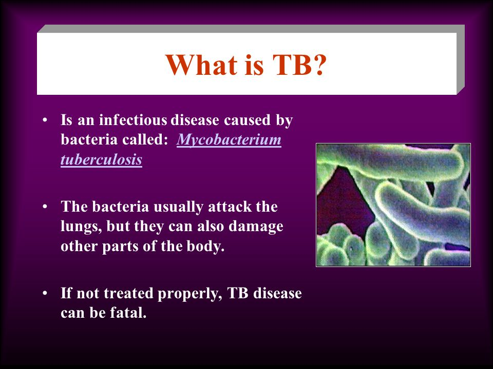 Is an infectious disease caused by bacteria called: Mycobacterium tuberculosisMycobacterium tuberculosis The bacteria usually attack the lungs, but they can also damage other parts of the body.