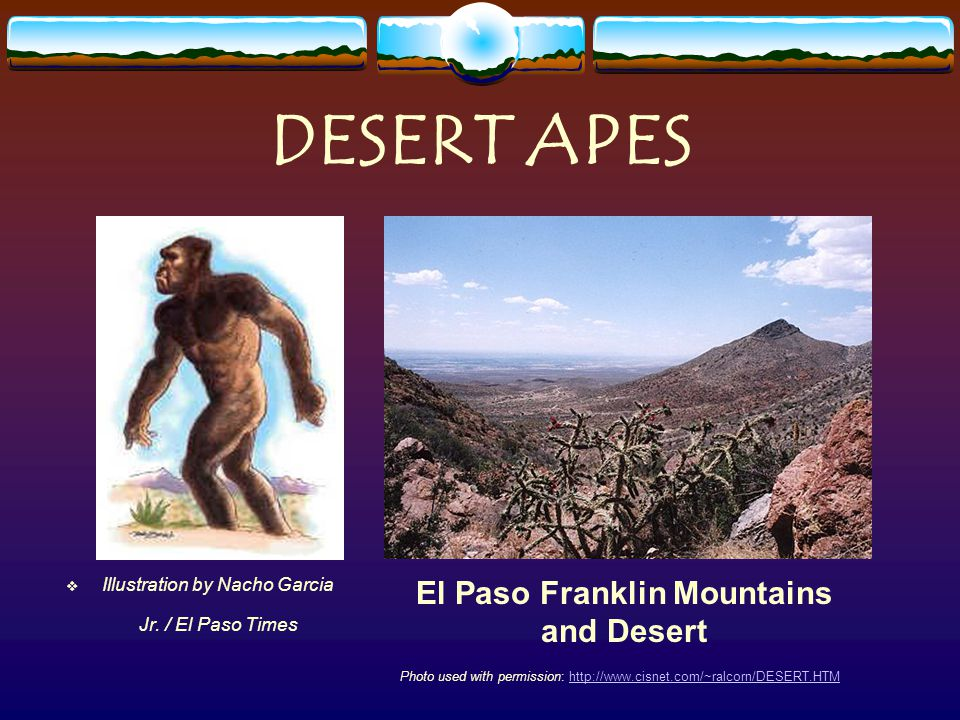 DESERT APES Illustration by Nacho Garcia Jr.