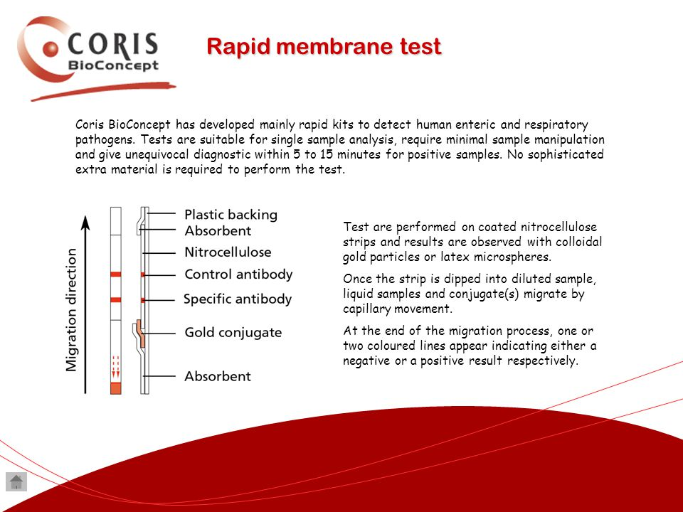 Coris BioConcept has developed mainly rapid kits to detect human enteric and respiratory pathogens. Tests are suitable for single sample analysis, req