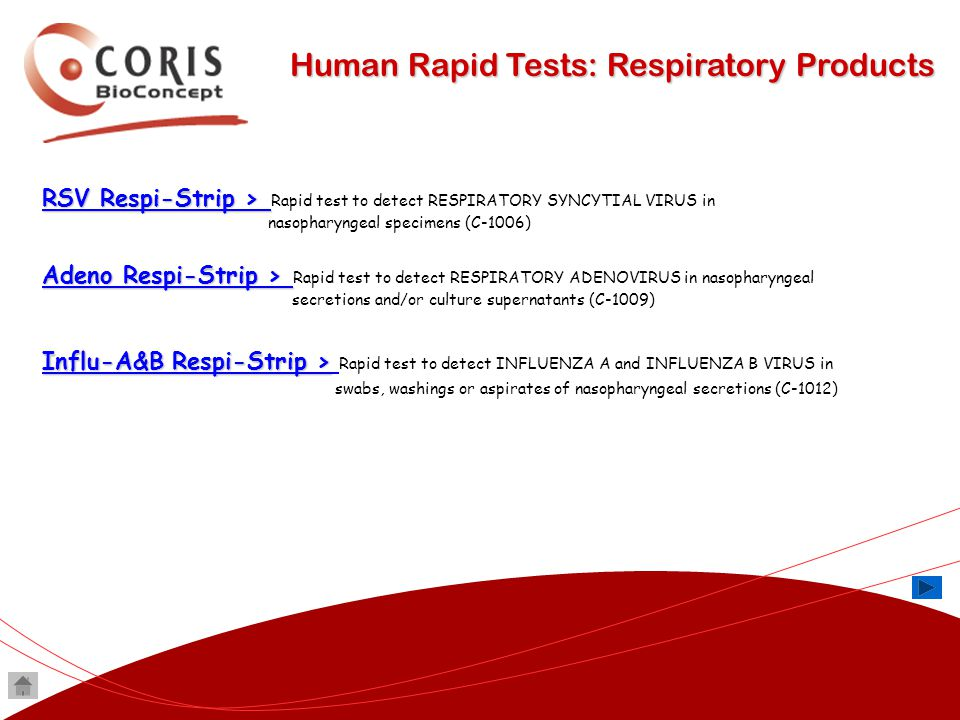 Human Rapid Tests: Respiratory Products RSV Respi-Strip > RSV Respi-Strip > RSV Respi-Strip > RSV Respi-Strip > Rapid test to detect RESPIRATORY SYNCY