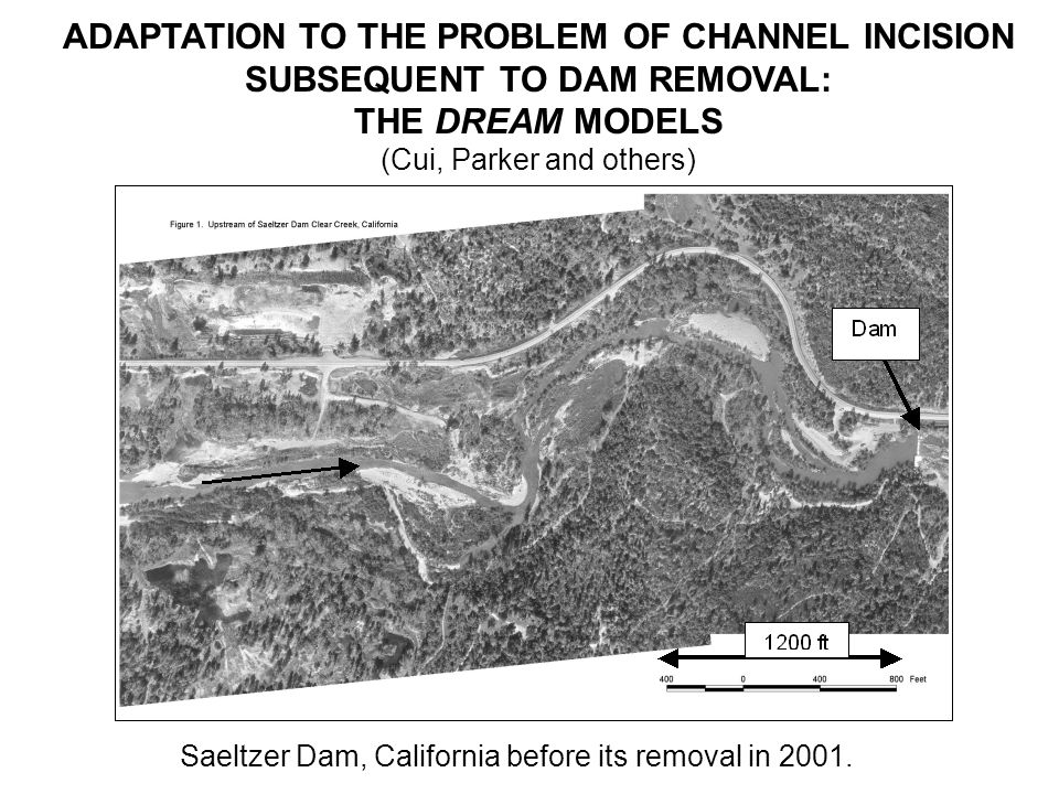 ADAPTATION TO THE PROBLEM OF CHANNEL INCISION SUBSEQUENT TO DAM REMOVAL: THE DREAM MODELS (Cui, Parker and others) Saeltzer Dam, California before its removal in 2001.
