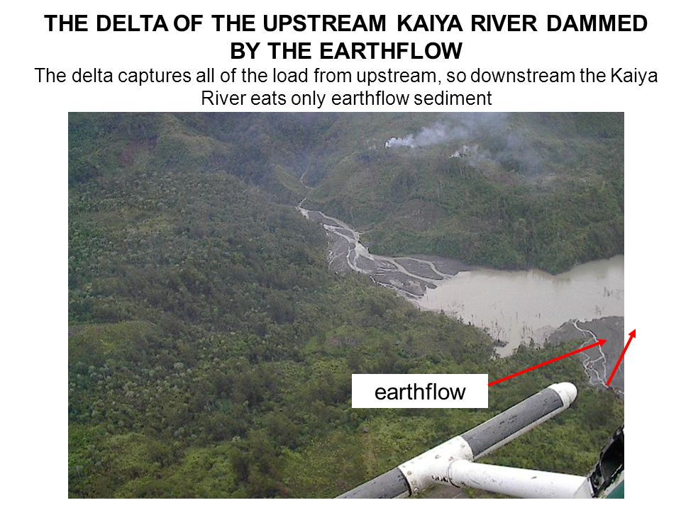THE DELTA OF THE UPSTREAM KAIYA RIVER DAMMED BY THE EARTHFLOW The delta captures all of the load from upstream, so downstream the Kaiya River eats only earthflow sediment earthflow
