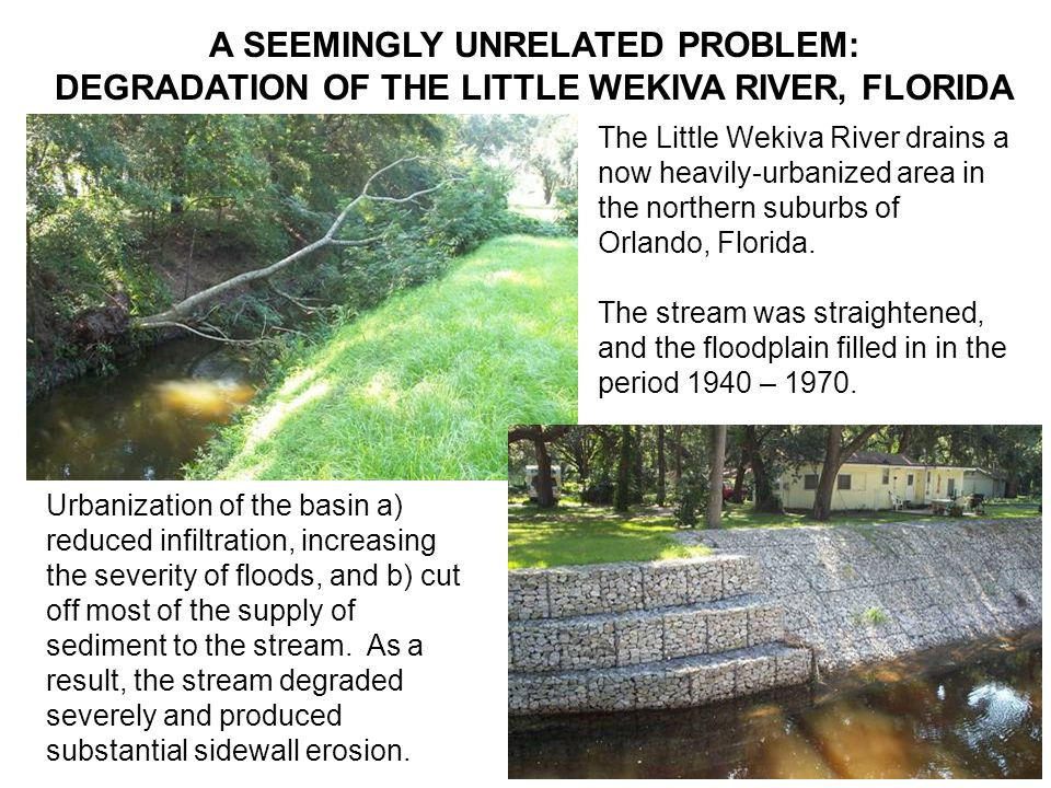 MORPHODYNAMICS OF DEGRADATION IN THE LITTLE WEKIVA RIVER Two of us (Cui and Parker, consulting) developed a morphodynamic model of the evolution of the Little Wekiva River as a tool for designing bank protection and grade control structures, which have since been installed.