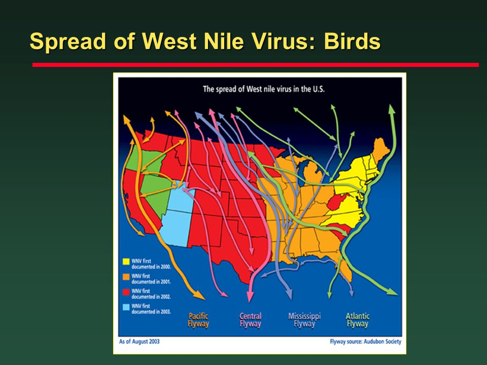 Spread of West Nile Virus: Birds