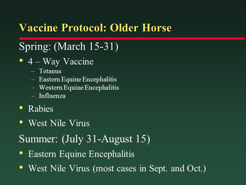 Vaccine Protocol: Older Horse Spring: (March 15-31) 4 – Way Vaccine –Tetanus –Eastern Equine Encephalitis –Western Equine Encephalitis –Influenza Rabi
