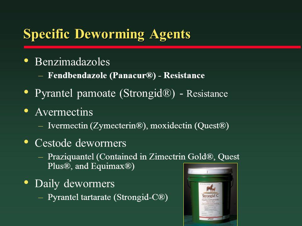Specific Deworming Agents Benzimadazoles –Fendbendazole (Panacur®) - Resistance Pyrantel pamoate (Strongid®) - Resistance Avermectins –Ivermectin (Zym
