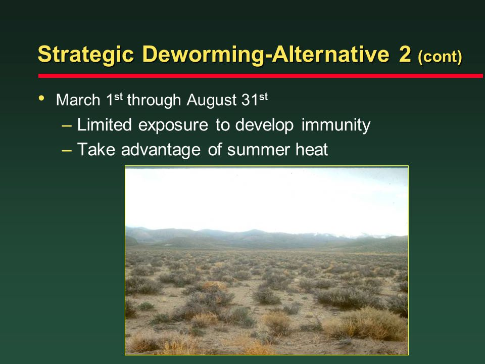 Strategic Deworming-Alternative 2 (cont) March 1 st through August 31 st –Limited exposure to develop immunity –Take advantage of summer heat