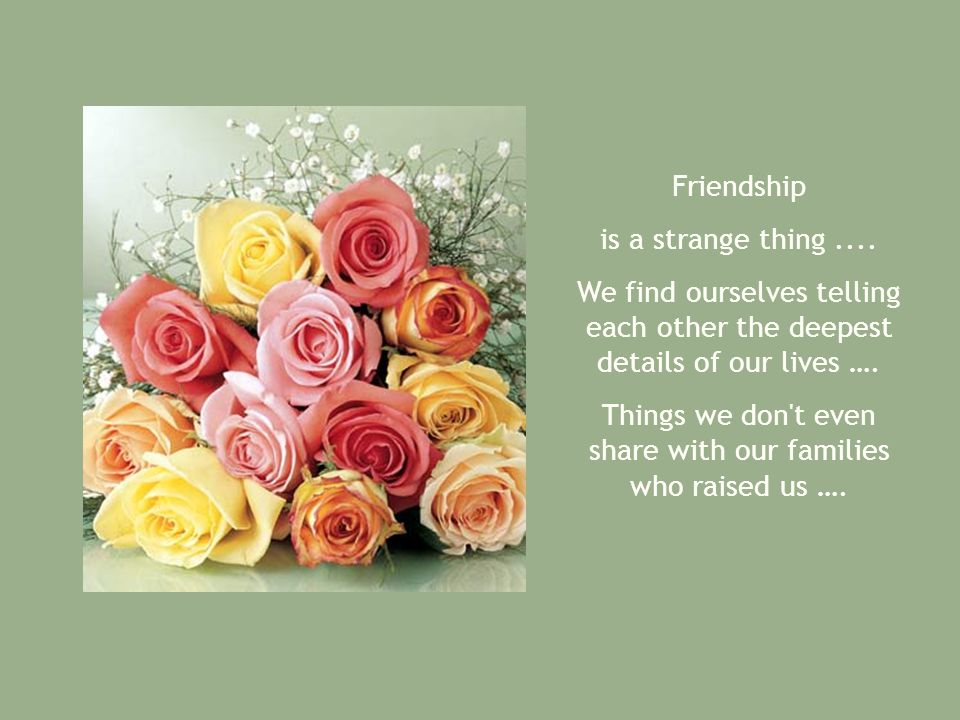 Friendship is a strange thing.... We find ourselves telling each other the deepest details of our lives …. Things we don't even share with our familie