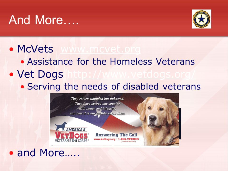 And More…. McVets www.mcvet.orgwww.mcvet.org Assistance for the Homeless Veterans Vet Dogs http://www.vetdogs.org/http://www.vetdogs.org/ Serving the