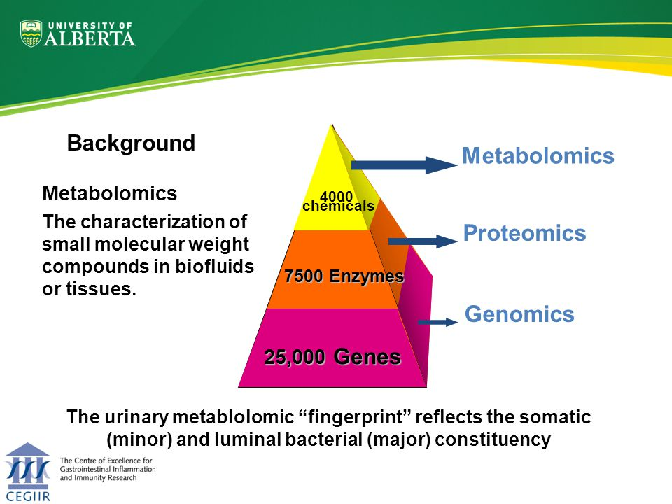 1.Altered luminal microflora play a key pathogenic role in IBD and colonic dysplasia… 2.Changes in microflora have been shown to markedly alter small molecule metabolites… Analysis of urinary metabolite profile (metabolomics) could differentiate individuals with different luminal bacterial profiles Background Hypothesis
