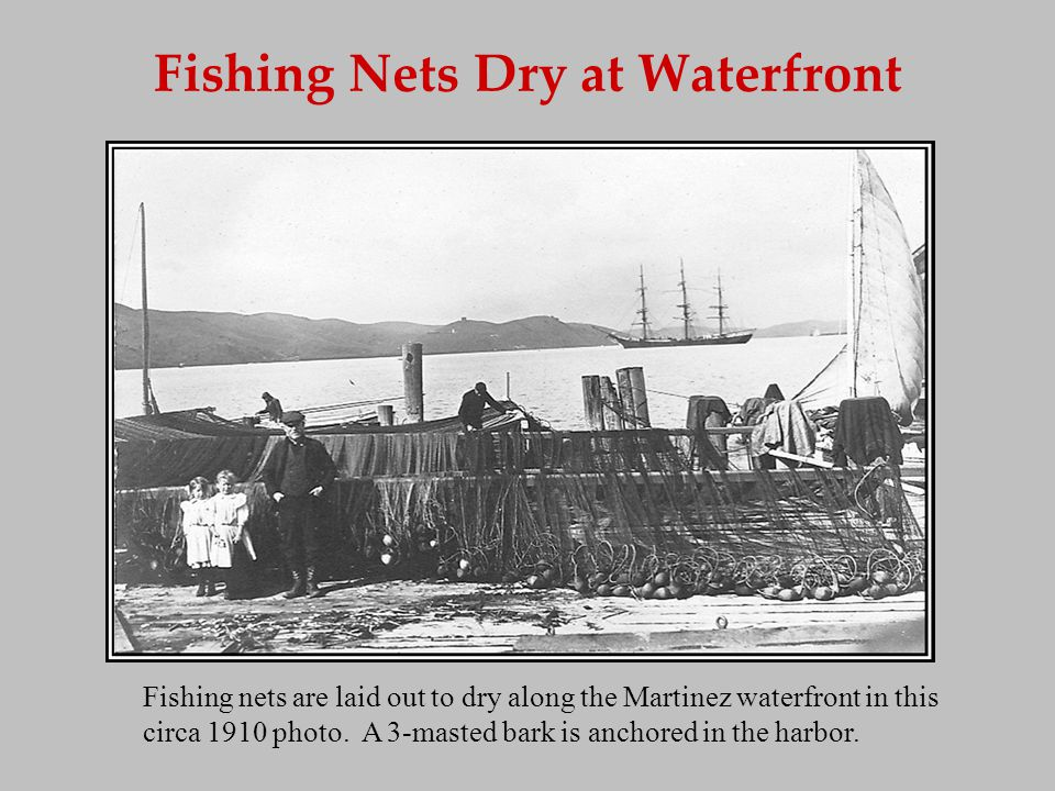 Fishing Nets Dry at Waterfront Fishing nets are laid out to dry along the Martinez waterfront in this circa 1910 photo. A 3-masted bark is anchored in