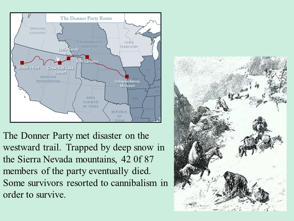 The Donner Party met disaster on the westward trail. Trapped by deep snow in the Sierra Nevada mountains, 42 0f 87 members of the party eventually die