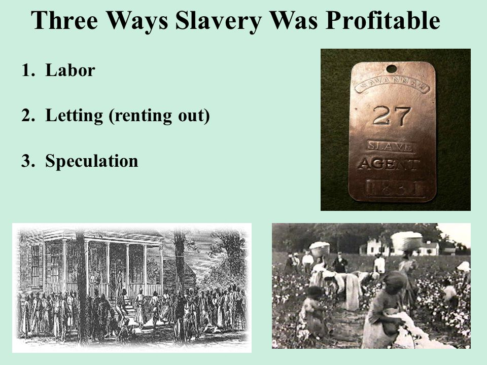 Three Ways Slavery Was Profitable 1. Labor 2. Letting (renting out) 3. Speculation