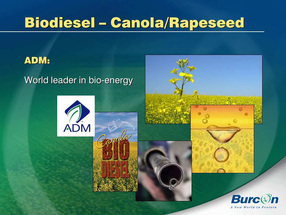 Biodiesel – Canola/Rapeseed ADM : World leader in bio-energy ADM : World leader in bio-energy