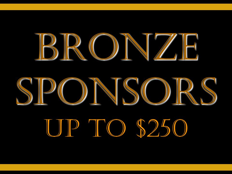 Bronze Sponsors Up to $250