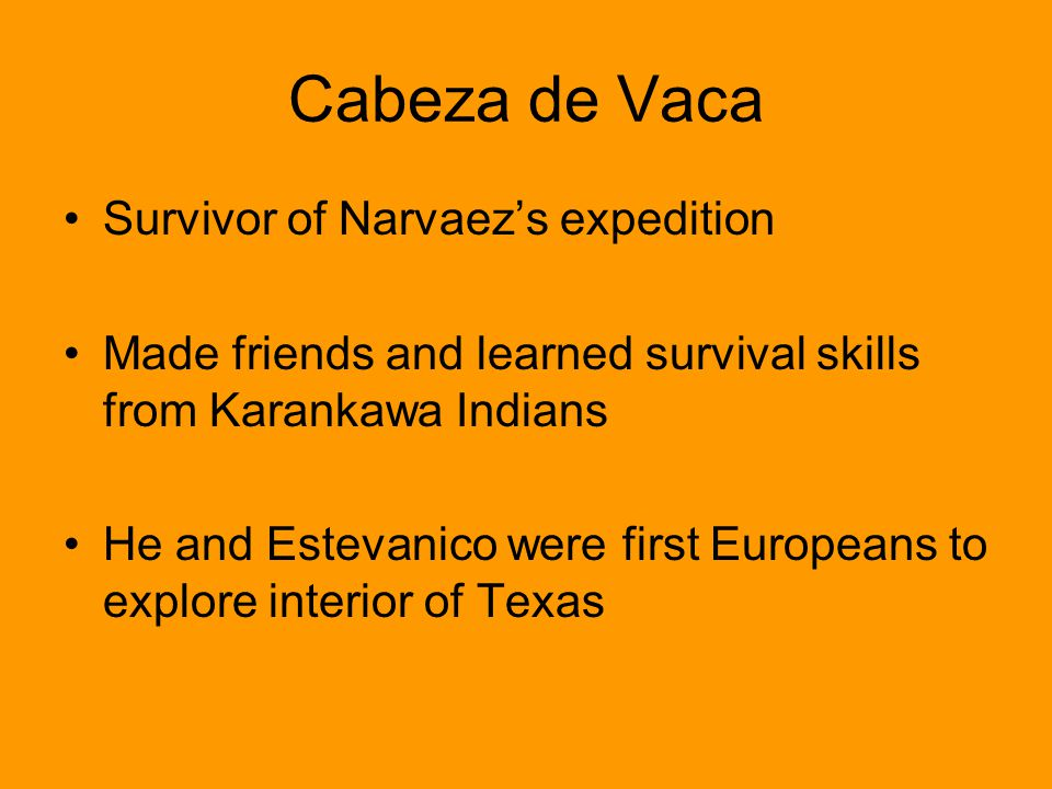 Cabeza de Vaca Survivor of Narvaezs expedition Made friends and learned survival skills from Karankawa Indians He and Estevanico were first Europeans