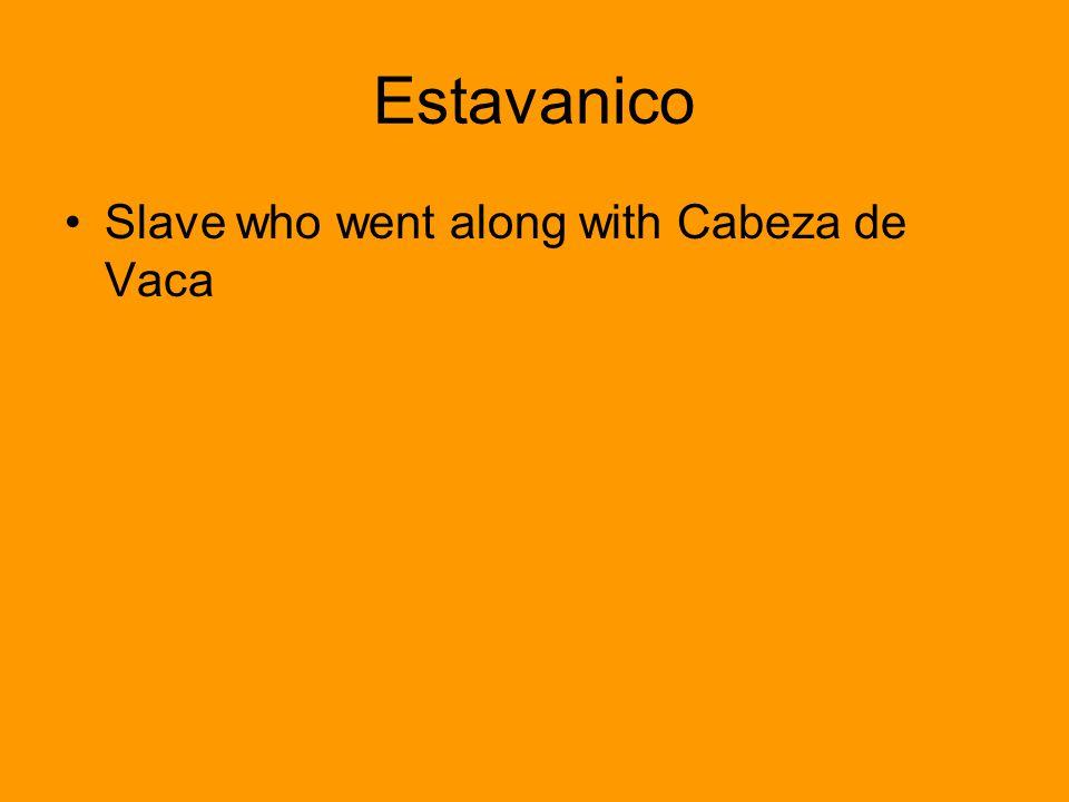Estavanico Slave who went along with Cabeza de Vaca